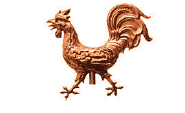 Rooster Realistic